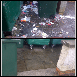 Public Bin Cleaning Before & After