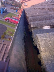 Gutter Cleaning After